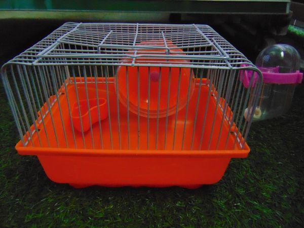 Lồng hamster đơn giản.jpg