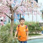 PhuongNguyenRohan